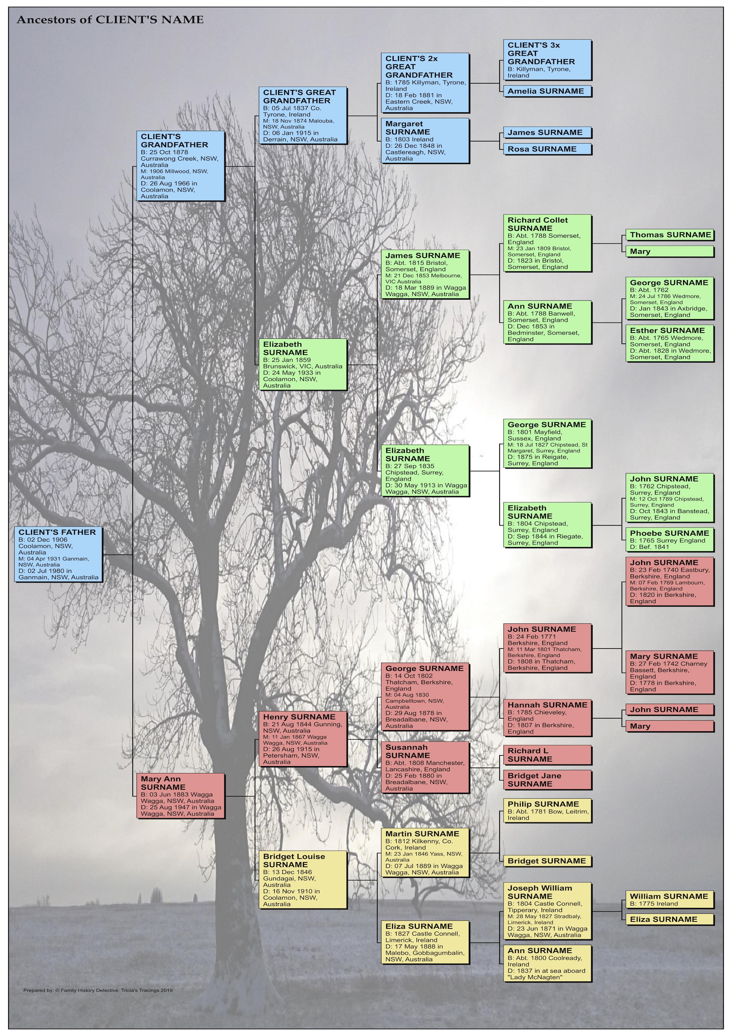 Paternal Pedigree Chart (full family)